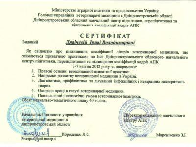 sertifikat_povysheniya_kvalifikatsii