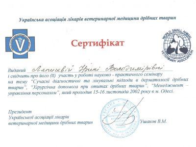 sertifikat_diagnostika_lecheniye_i_khirurgiya_pri_otitakh