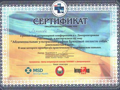 sertifikat_abdominal'naya_ul'trasonografiya_bryushnoy_polosti_sobak