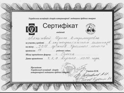 sertifikat_YZI_organov_brushnoy_oblasti